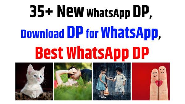 35+ New WhatsApp DP, Download DP for WhatsApp, Best WhatsApp DP
